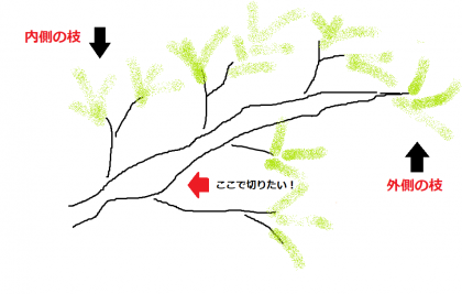 Leave-the-inner-branch