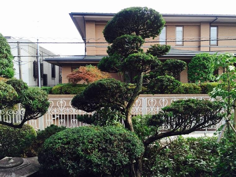 kyaraboku-tamachirashi-karikomigo