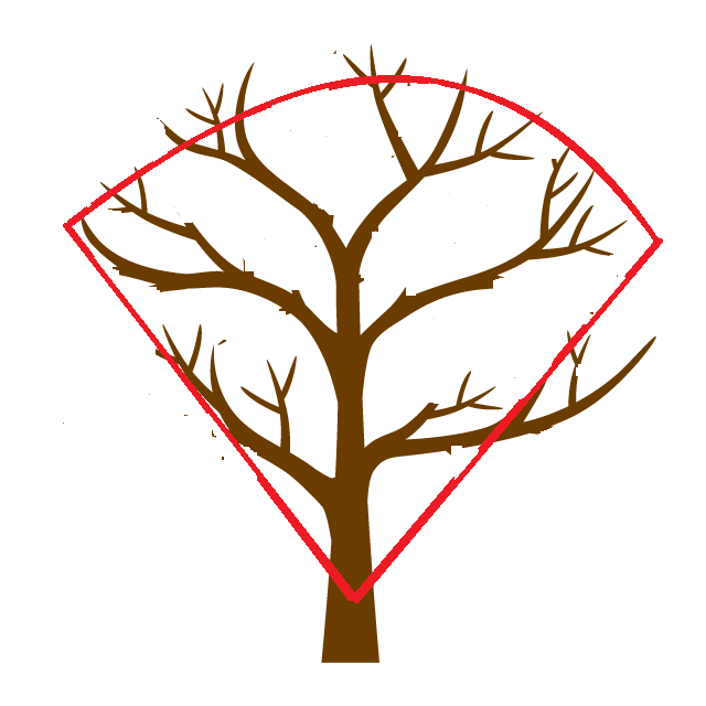 thin-out-branches