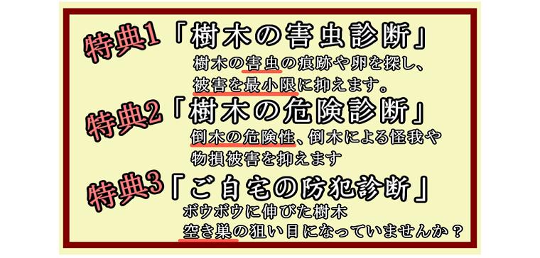 tokuten1-3