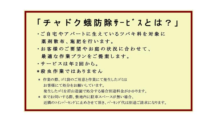 tyadokuga-boujo-servise-details